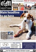 My first ever front page photo. This also happens to be the first time a puppy has appeared on Grocott's Mail's front page.