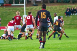 Kingswood College's fullback looks on as Kearsney looks to build an attack in the Kingswood College 125 First Team Rugby Festival. Photo: Stephen Kisbey-Green