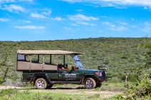 As a member of the Eastern Cape Parks and Tourism Agency, the Great Fish River Nature Reserve offers guests game and heritage drives on their large game vehicles. Photo: Stephen Kisbey-Green