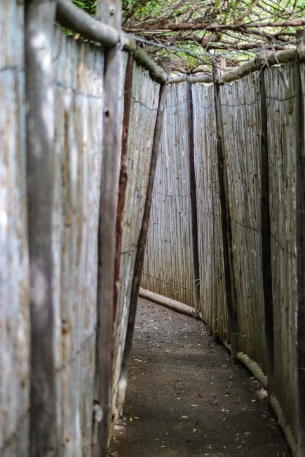 The tunnel to enter the Kentucky Bird Hide inside the Great Fish River Nature Reserve is long and slightly disorientating, however the views and potential for bird sightings is worth it all. Photo Stephen Kisbey-Green