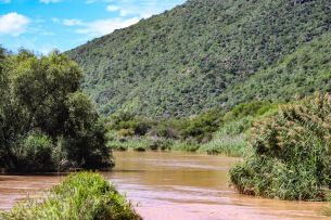 Driving over one of the very few river crossings in the Reserve, one can get a rare opportunity to stare down the Great Fish River, and might even be able to spot a Hippo. Photo: Stephen Kisbey-Green