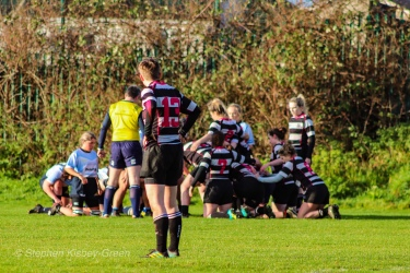 Old Belvedere's back line looks on as the teams set for a scrum. Photo: Stephen Kisbey-Green