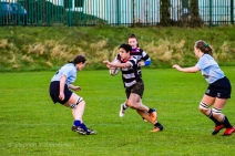 Old Belvedere RFC on the attack against DCU. Photo: Stephen Kisbey-Green